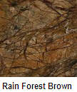 Rain Forest Brown color granite countertop
